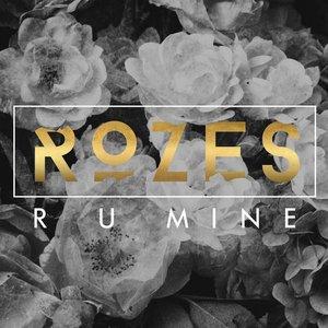 Image for 'R U Mine'