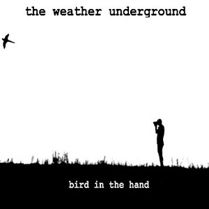 Immagine per 'Bird In The Hand'