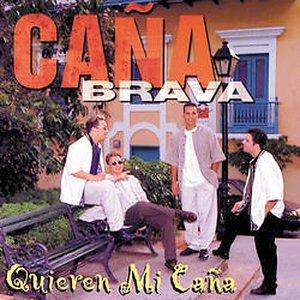 Image for 'Quieren Mi Caña'