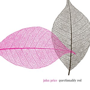 Image for 'Questionably Red'