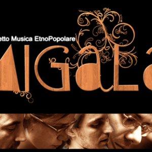 Bild för 'progetto migala'