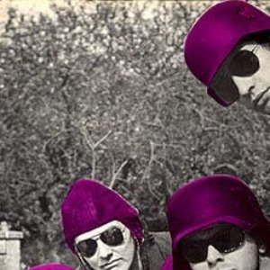 Image for 'The Purple Helmets'
