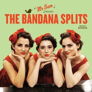 Bild für 'Mister Sam Presents The Bandana Splits'