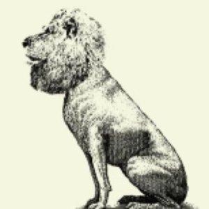 Bild für 'Stone Lions'