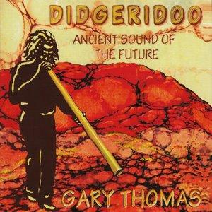 Bild för 'Didgeridoo'