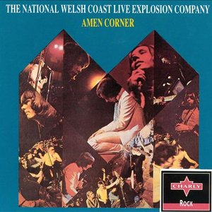 Image for 'The National Welsh Coast Live Explosion Company'