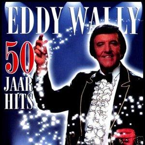 Image for '50 jaar hits'