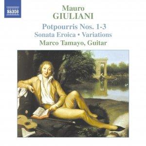 Image for 'GIULIANI: Guitar Music, Vol.  2'
