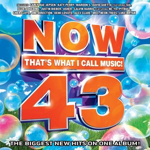 Immagine per 'Now That's What I Call Music, Vol. 43'