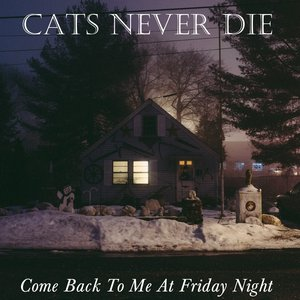 Image for 'Come Back To Me At Friday Night'