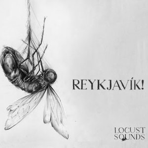 Image for 'LOCUST SOUNDS'