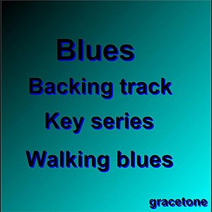 Image for 'Blues Backing Track Series'