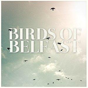 Image for 'Birds of Belfast'