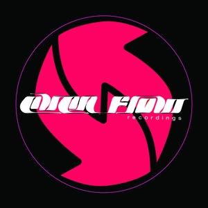 Image for 'Big Bad Bruiser (Diverted Remix)'