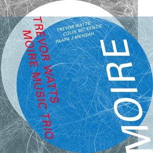 Image for 'Trevor Watts Moiré Music Trio'