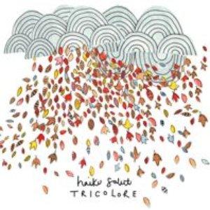 Imagen de 'Tricolore'