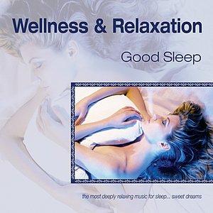 Image for 'Wellness and Relaxation ~ Good Sleep'