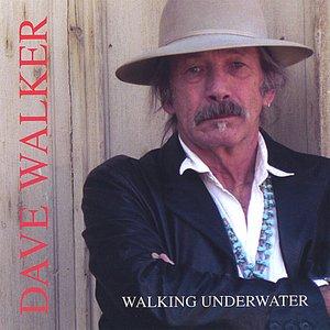Immagine per 'Walking Underwater'