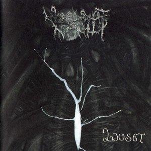 Image for 'Ljuset'