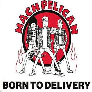 Immagine per 'Born To Delivery'