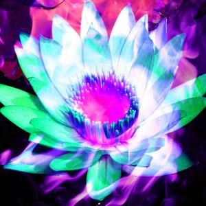 Imagen de 'Feeling Free'