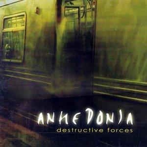 Image for 'Destructive Forces'