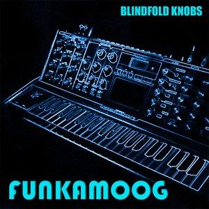 Image for 'Funkamoog (single)'