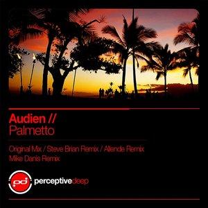 Imagen de 'Palmetto (Steve Brian Remix)'