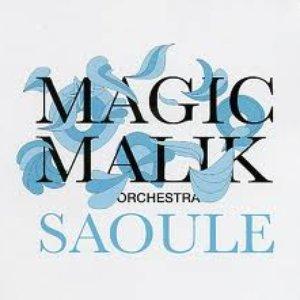 Imagem de 'Saoule'