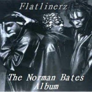 Bild för 'The Norman Bates Album'