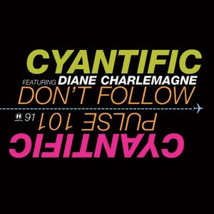 Image for 'Don't Follow (feat. Diane Charlemagne)'