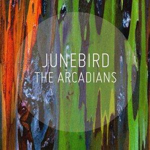 Image for 'Junebird'