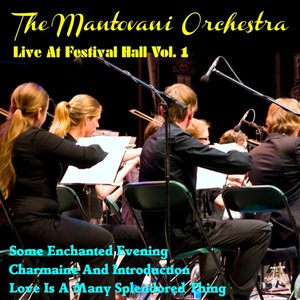 Image for 'Live at Festival Hall, Vol.1'