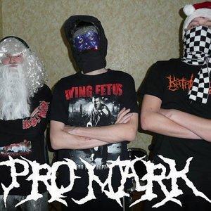 Bild för 'Pro Mark'