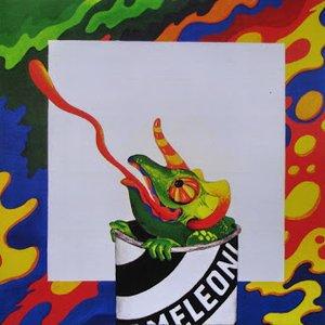 Bild für 'Kameleoni'