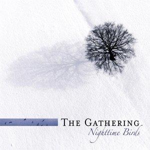 Image for 'Nighttime Birds (re-issue + Bonus Tracks)'