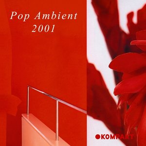 Image for 'Pop Ambient 2001'