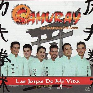 Image for 'Las Joyas De Mi Vida'