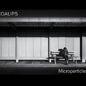 Изображение для 'Microparticles'