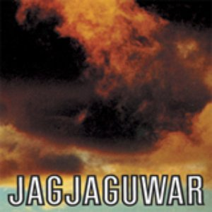 Bild für 'Jagjaguwar'