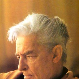 Image for 'Herbert von Karajan-Berliner Philharmoniker'