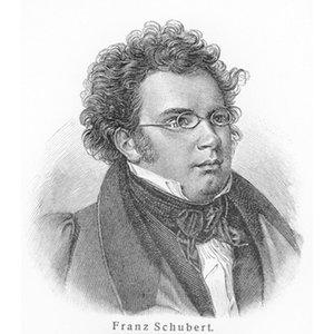 Bild für 'Schubert: The Masterpieces'