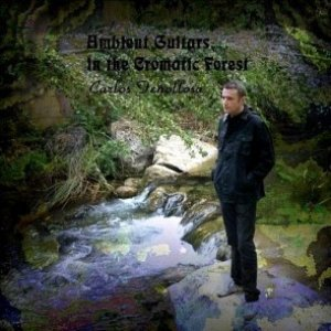 Image for 'Ambient Guitar in the Cromatic Forest'