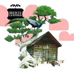 Image for 'Bird Lantern'