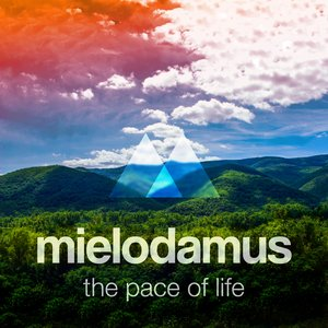 Image for 'The Pace of Life'