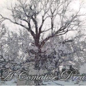 Image for 'A Comatose Dream'