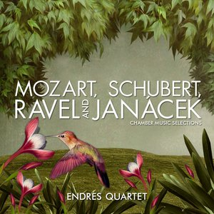 Image for 'Mozart, Schubert, Ravel and Janácek: Chamber Music Selections'