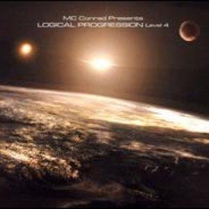 Image for 'Logical Progression Level 4'