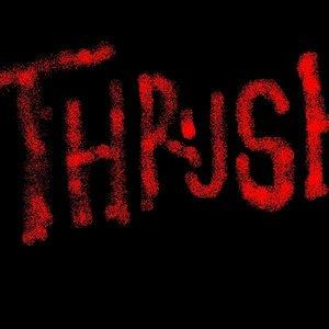 Image for 'thrushband'
