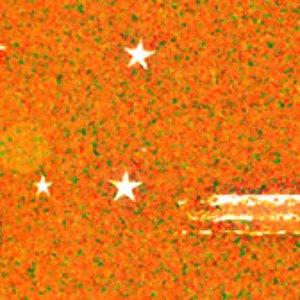 Image pour 'Dhopec'
